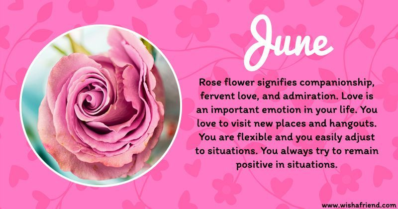 June Birth Flower Rose Birth Flowers Birth Month Flowers June Birth Flower