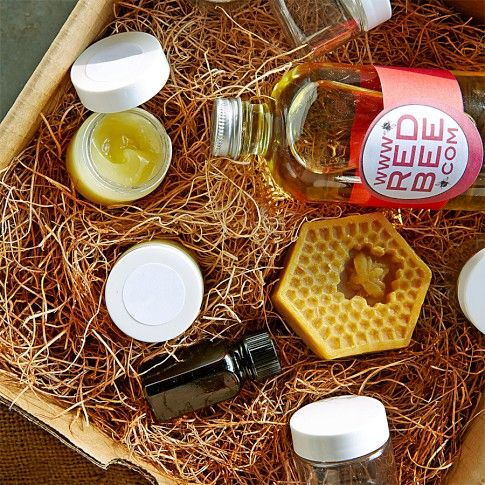 Beeswax Lip Balm Making Kit | &| Bees & Maple Syrup