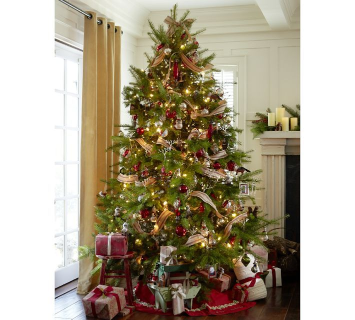Image result for Advice For Choosing Christmas Trees Online