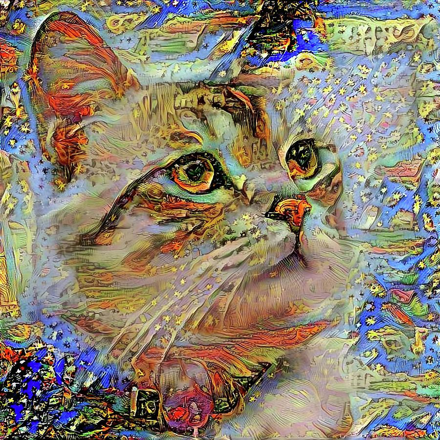 Celeste The Star Gazing Cat By Peggy Collins