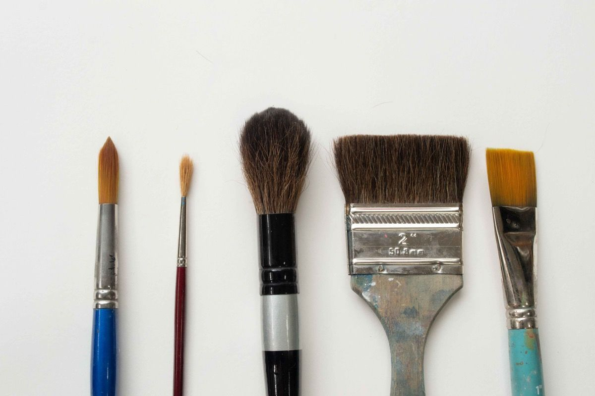 10 Types Of Paintbrushes Every Artist Should Know Paint