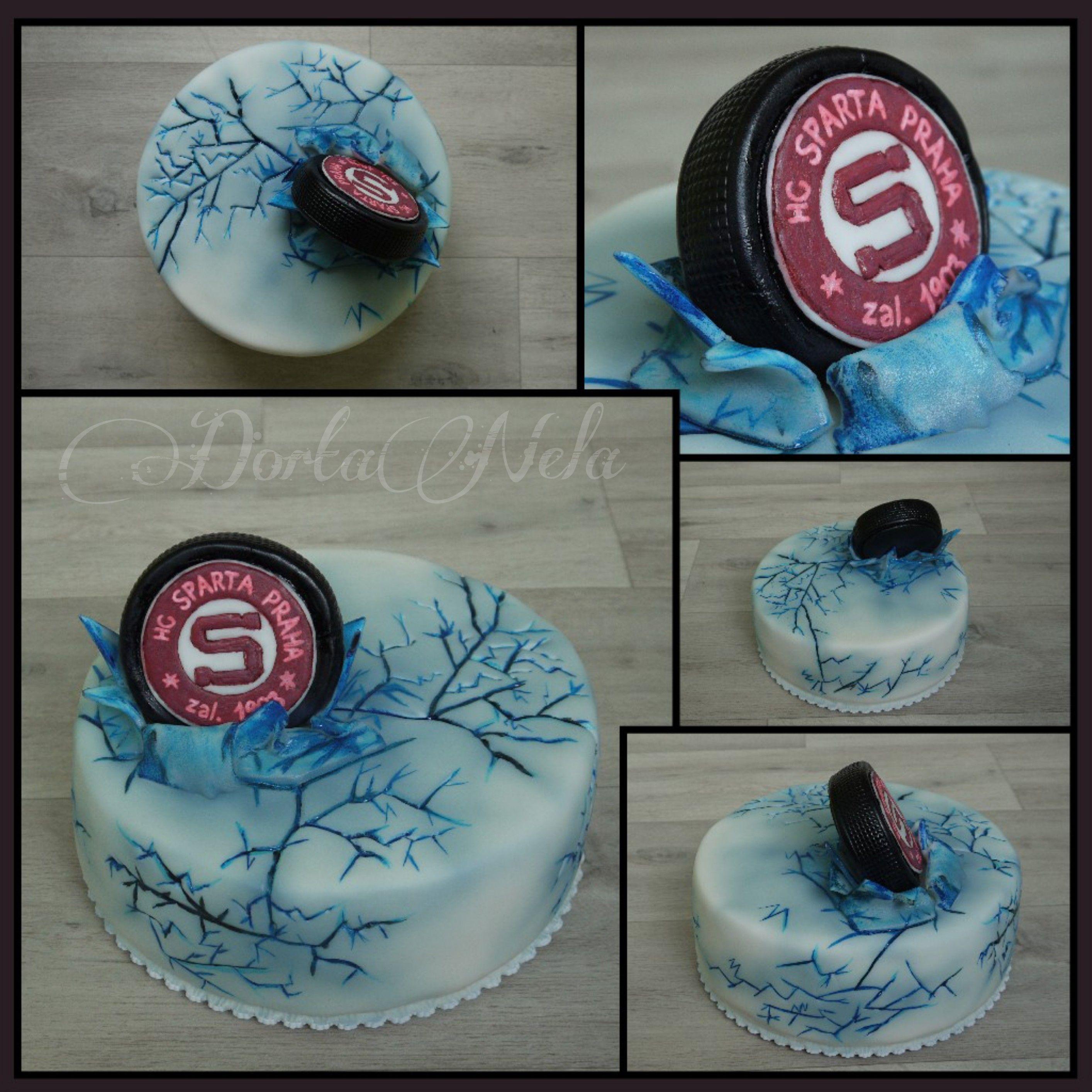 Hockey Puck On Ice Puk V Ledu Hockey Birthday Cake Hockey Cakes Ice Cake