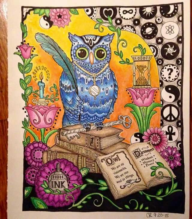 Owl In Colored Pencil Owl Coloring Pages Color Pencil Art Coloring Pages