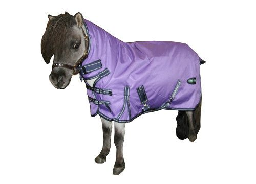 Iv Horse Wee Small Pony Turnout Rugs