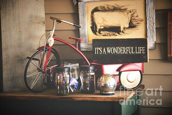 #Zulma #art #photograph #bicycle #picture #frame