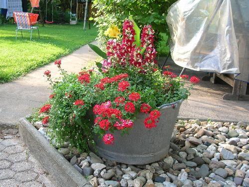 bildergebnis f r zinkwanne bepflanzen garten pinterest zinkwanne bepflanzen zinkwanne und. Black Bedroom Furniture Sets. Home Design Ideas