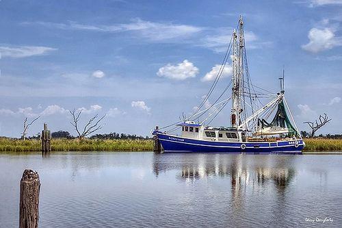 Nothing like shrimp from Louisiana, absolutely nothing!