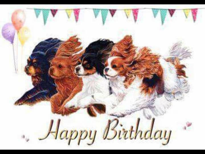 This is going to be my birthday card! | King charles ...