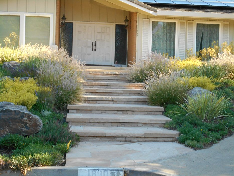 California Landscaping Ideas california native landscape designs | landscaping ideas san