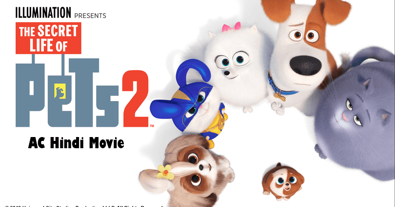 Pin On The Secret Life Of Pets