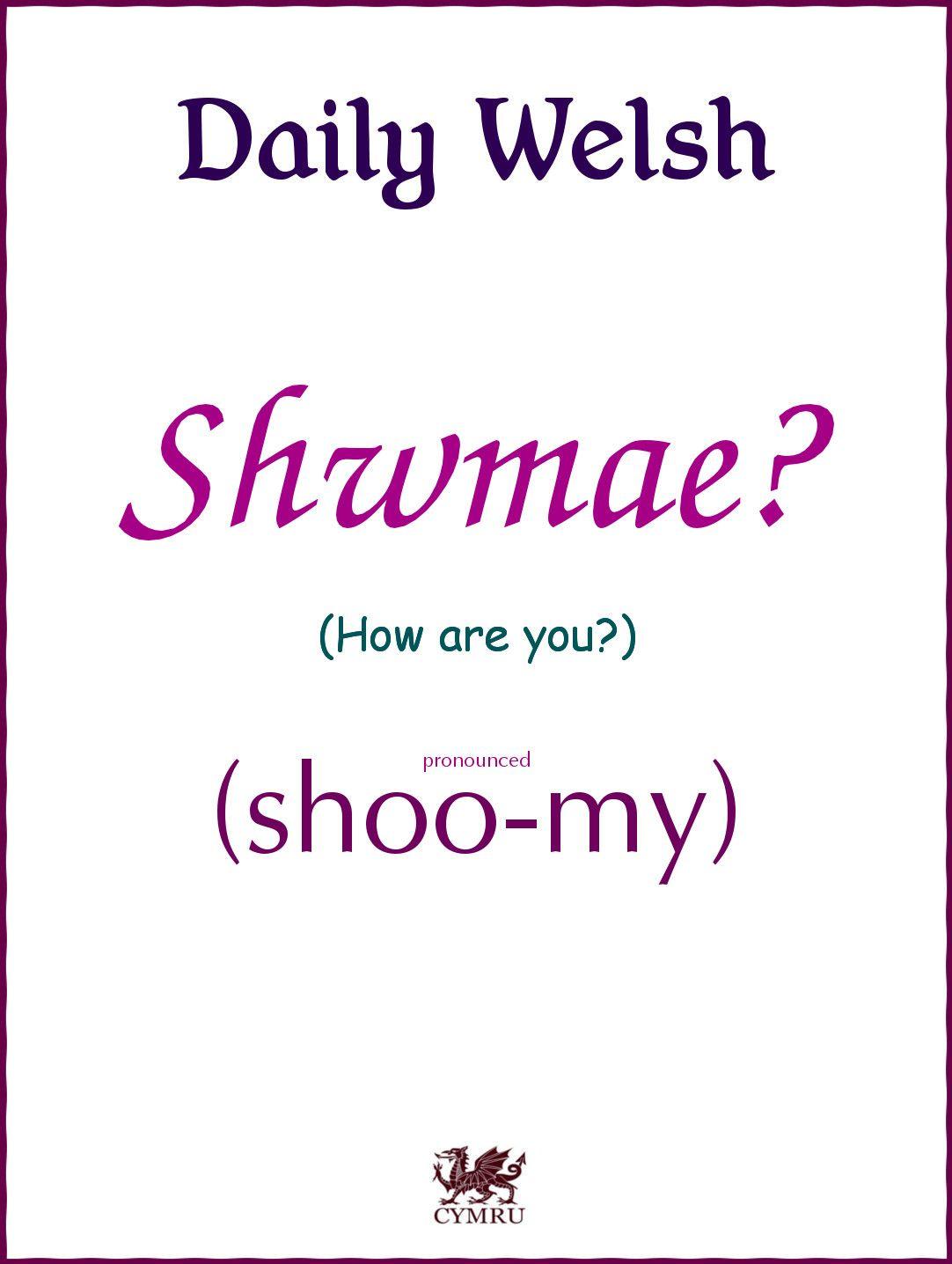 Welsh Language Translation Service   Based in Wales