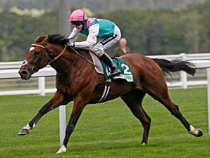 Frankel - Undefeated