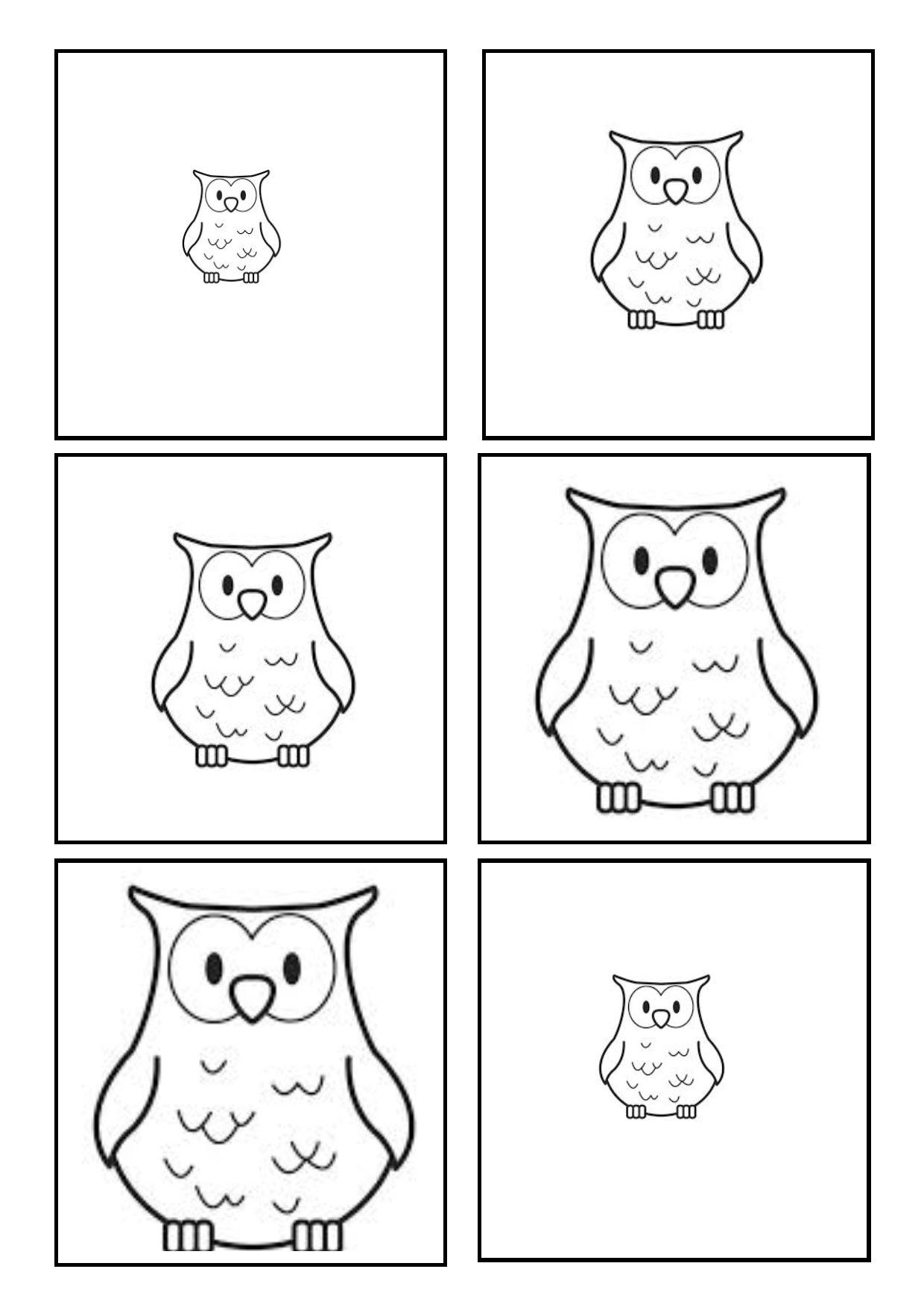 Owl Sequencing