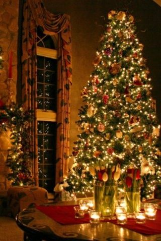 Omg I Ve Always Wanted A Big Christmas Tree In A Lounge