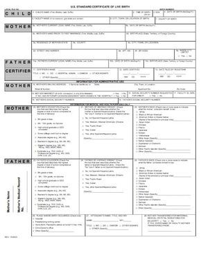 15 Birth Certificate Templates (Word U0026 PDF)   Template Lab  Birth Certificate Template For Word