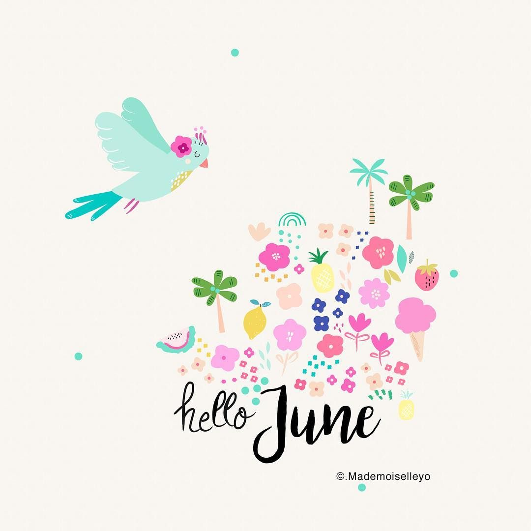 Have a lovely month... ice cream time, summer arrived! #stationery#birdsillustration#hello#esty#etsysucess#stationery#artwork#illustration#pattern#papergood#floral#hellojune