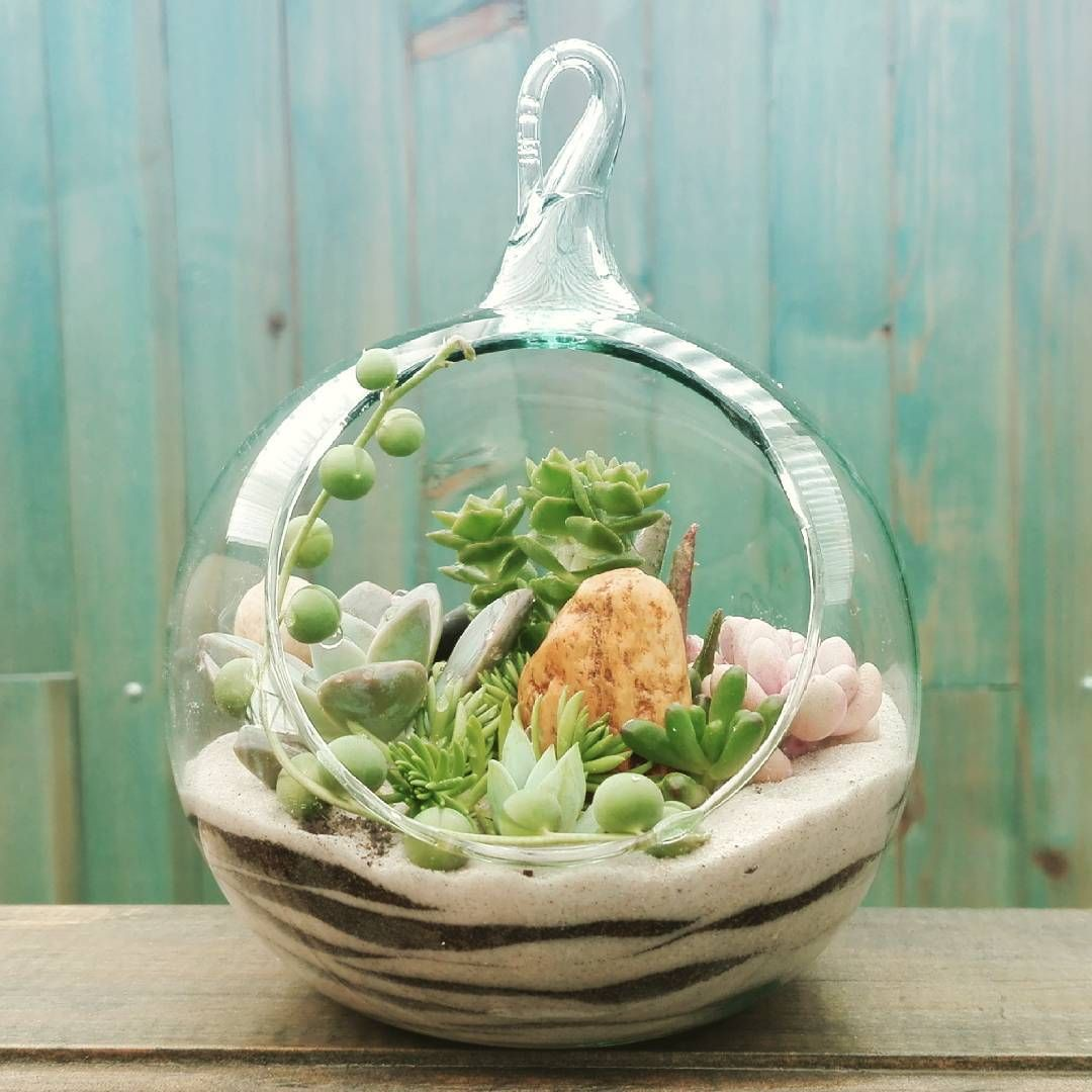 Articulos farfalla terrario en vidrio soplado con for Decoracion para terrarios