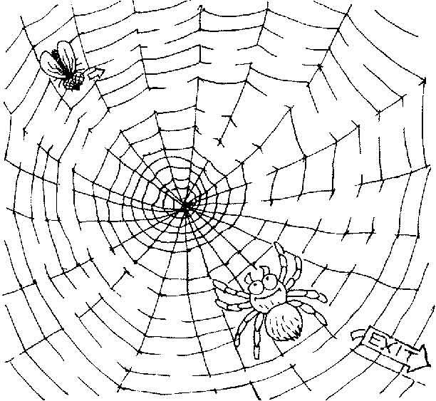 cbd uk charlottes web coloring pages | Free Printable Mazes for Kids at AllKidsNetwork.com ...