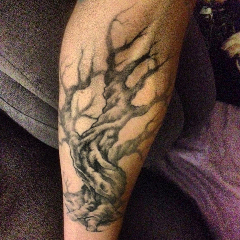 m s de 25 ideas incre bles sobre tatuajes de rbol de oliva en pinterest tatuaje del 7. Black Bedroom Furniture Sets. Home Design Ideas