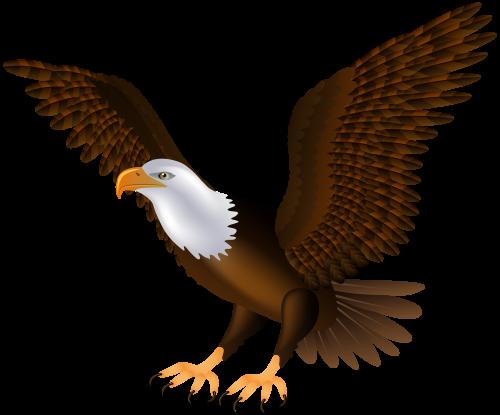 Eagle Png Clip Art Clip Art Art Images Art