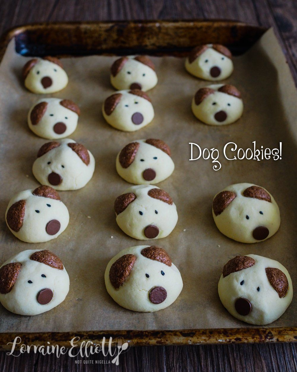 Pawfully Good Dog Cookies For The Chinese New Year Of The Dog