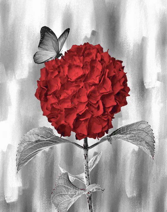 Red Flower & Butterfly
