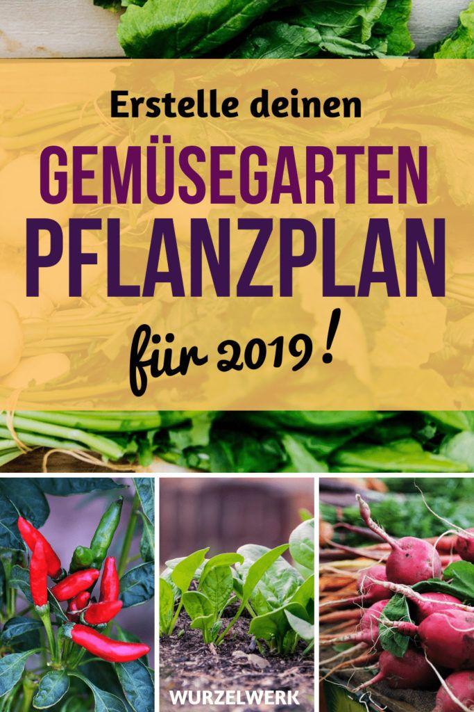 Wie du einen Anbauplan für deinen Gemüsegarten erstellst + Beispielplan - Wurzelwerk