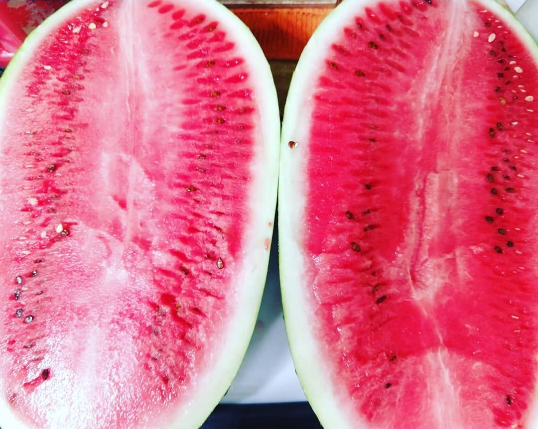 Texas seeded watermelon 🍉 just before a little water skiing in the Texas heat. 🔥