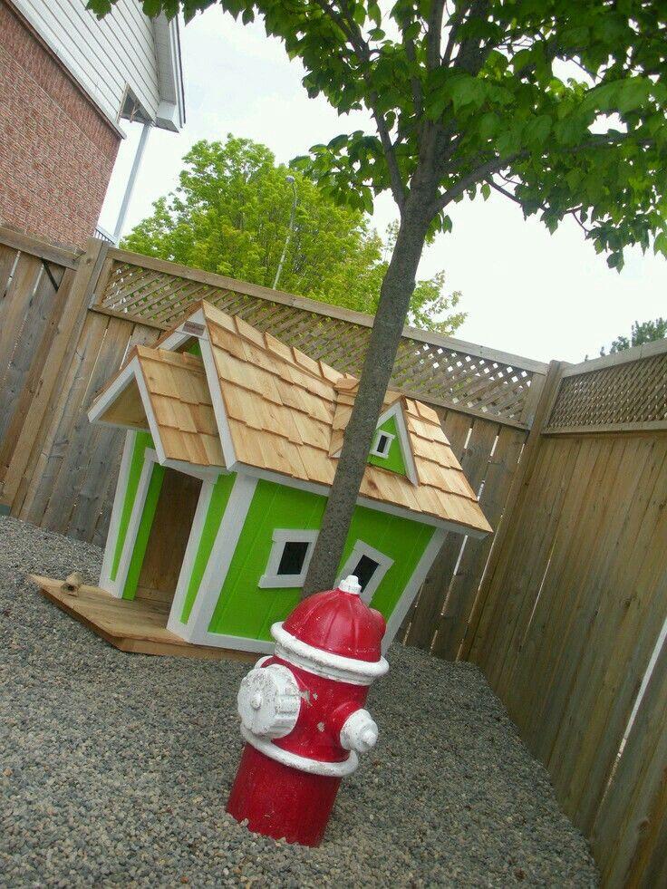 Not green, obviously. >.>   Pet friendly backyard ...