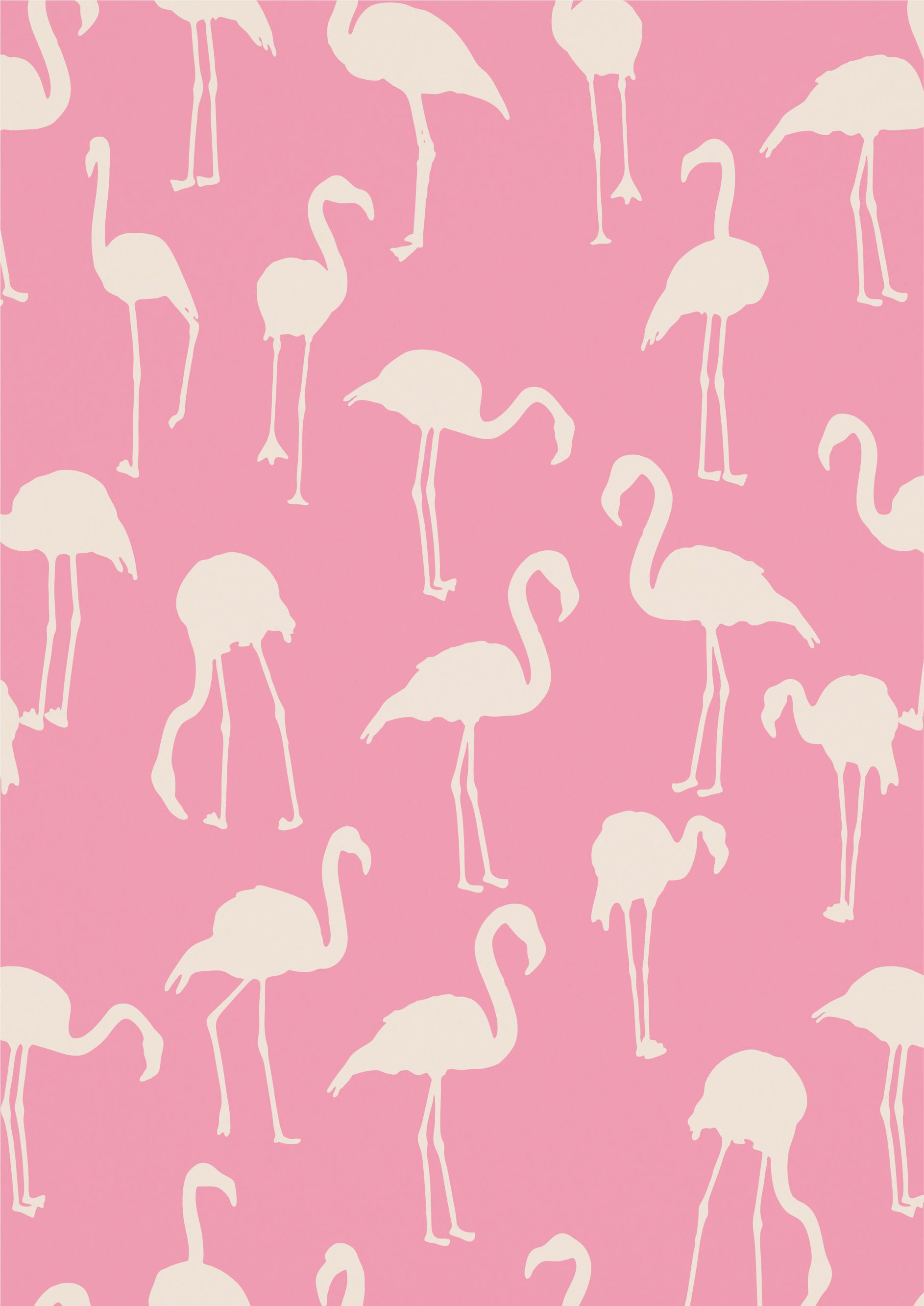 Fotowand Hintergrund Flamingo Pattern Need This As Wrapping Paper Fotowand