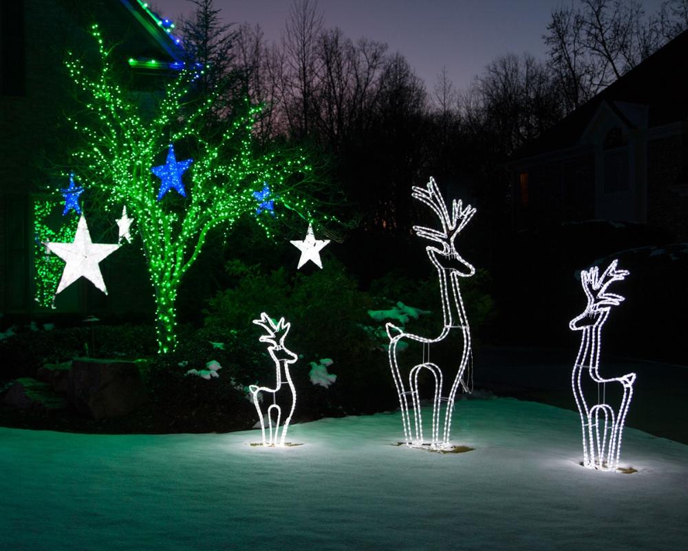 Outdoor Christmas Decorations Christmas Lights Etc Christmas Lights Outdoor Trees Outdoor Christmas Outdoor Christmas Decorations