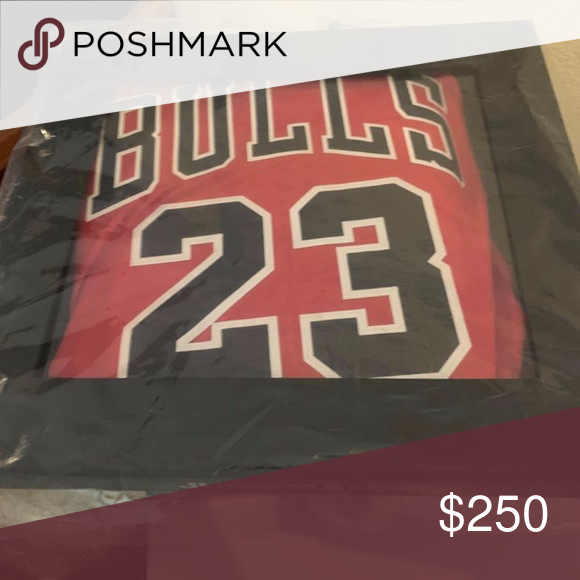 wholesale dealer c37b2 ddc92 Michael Jordan Icon Edition Authentic Jersey (Chic Nike NBA ...