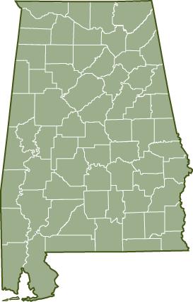 6f877483538c74c9142dd3aa16e2eddd - Planting Guide For Home Gardening In Alabama