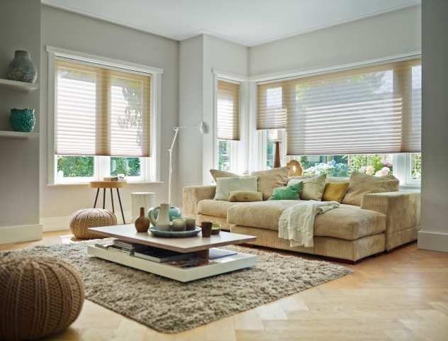 Great Plissees von Germania Rollo im Wohnzimmer