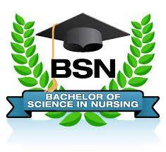 Bsn Bachelors Nursing Goal Statement Writing Service  Bachelors