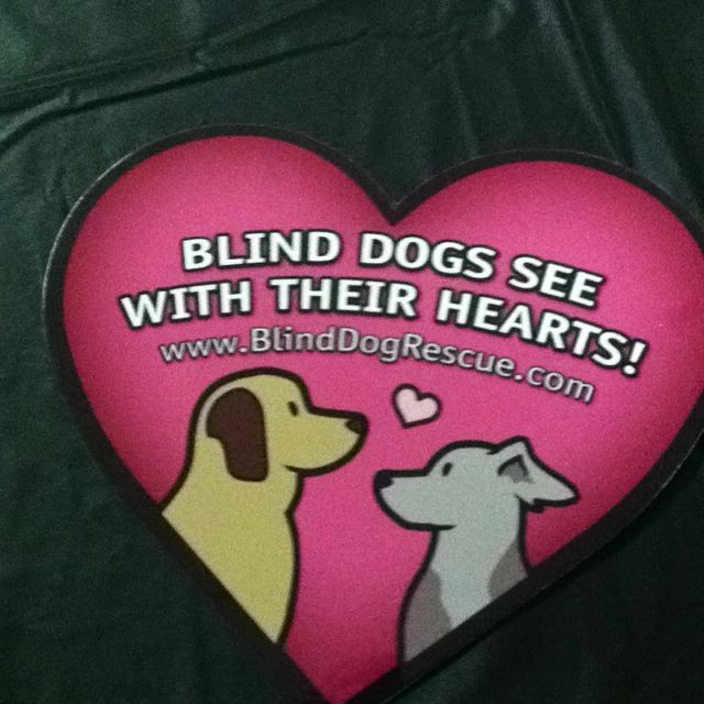 Blind Dog Rescue Alliance fundraiser event Rahway NJ 5/5