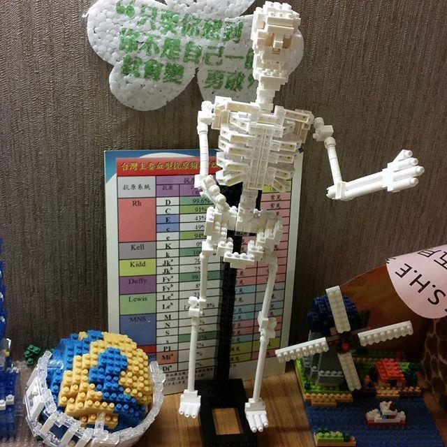 OMG!!緊急脊椎重建,還好重新站起來了。😂😂😂 #手殘 #nanoblock #