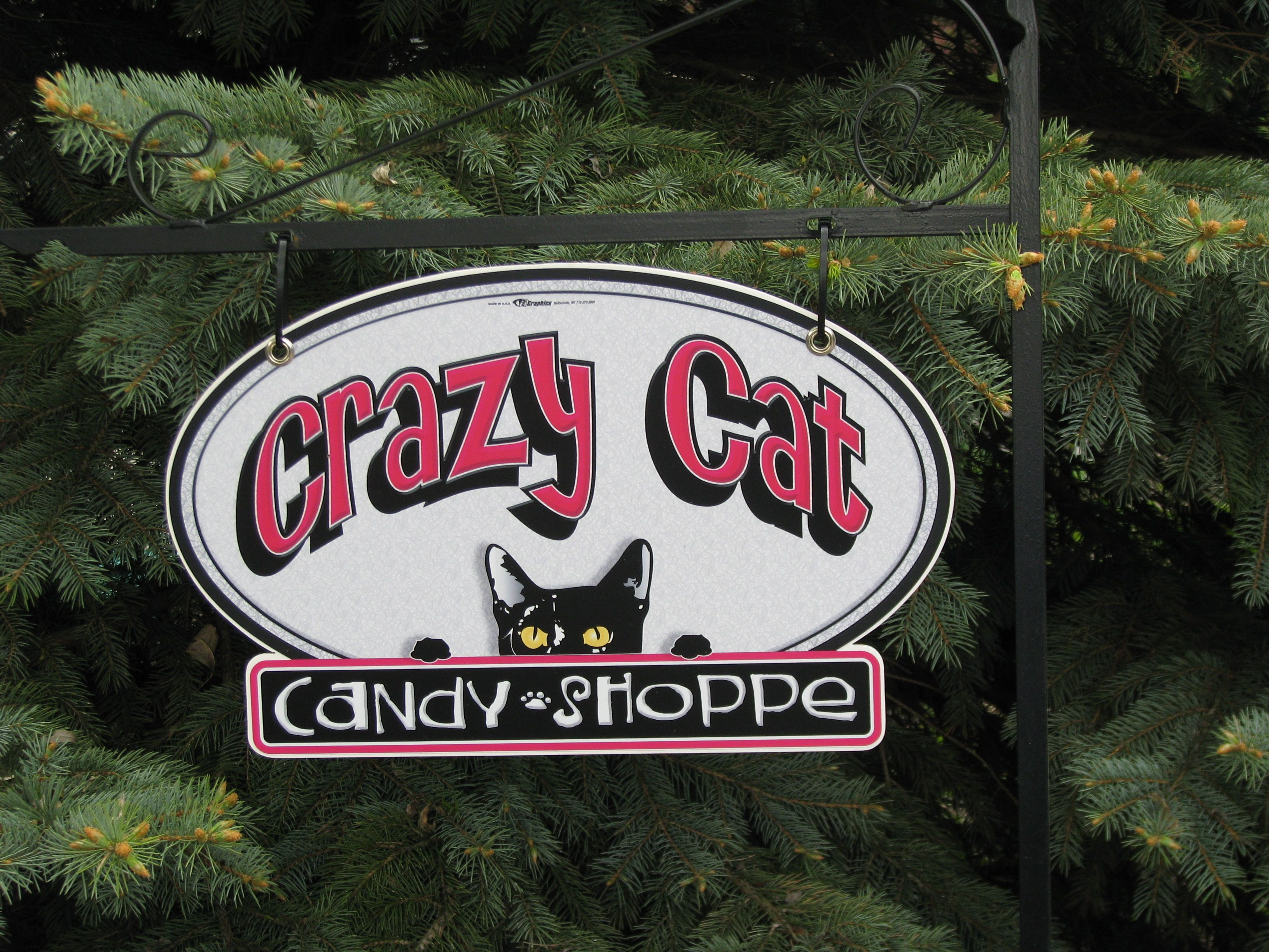 Pin by Michelle T. on Wisconsin Crazy cats, Cavaliers
