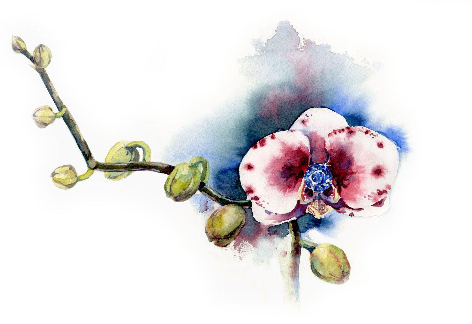 flowers & gems