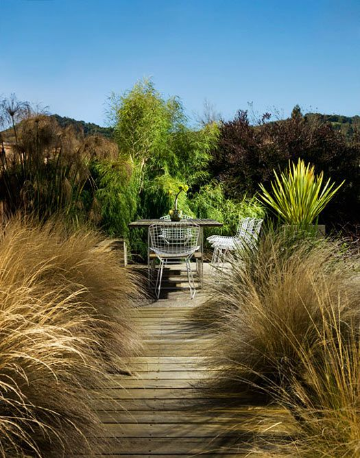 Outdoor dining with ornamental grasses and decking