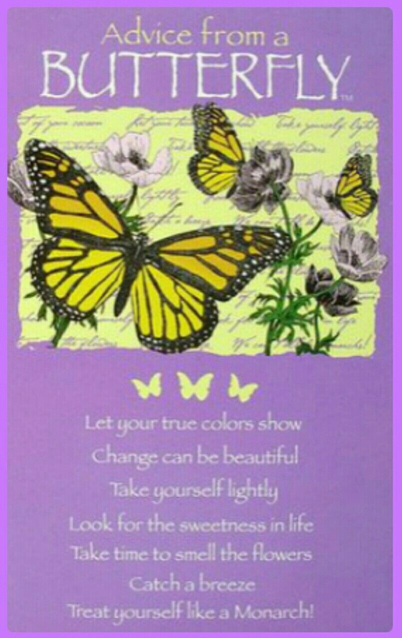 Pin By Jill Carroll On Hmmm Butterfly Quotes Butterfly Nature Quotes