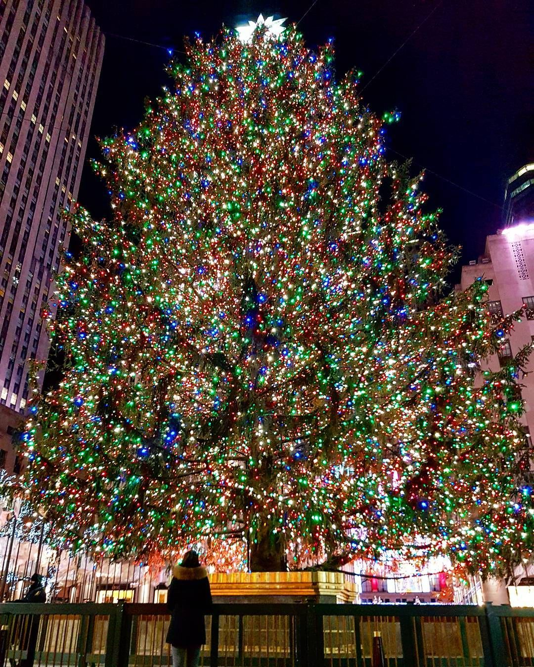 A dream comes true. Standing in front of this huge christmas tree at Rockefeller Center in New York City 🎄🎁🎉 #travelerela 💋🌹❤ #itsthemostwonderfultimeoftheyear #christmas #rockefellercenter #nyc #christmastree #manhattan #tree #dream #ny #travelbucketlist #travellingaroundtheworld #fondoftravel #beautiful #travel #wanderlust #journey #bestvacations #onlyoneway