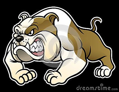 Angry Bulldog Bulldog Cartoon Funny Easy Drawings Comic Style Art