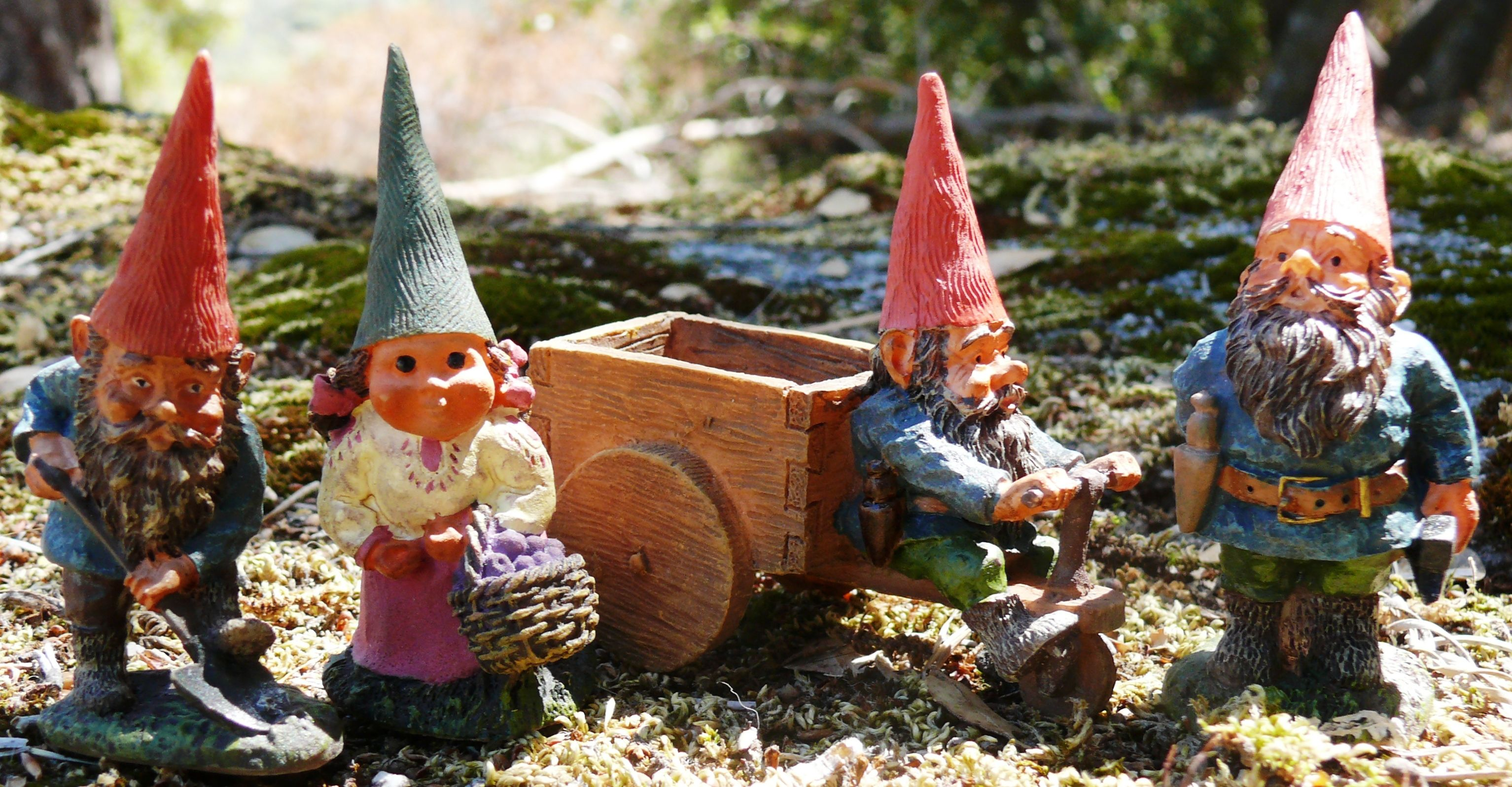 Four Little Garden Gnomes Are Hard At Work In Our Enchanted Miniature  Forest.