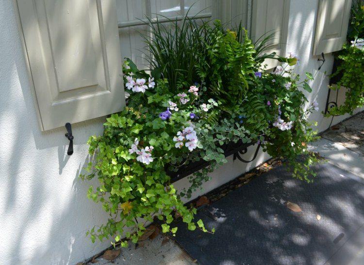 Ein Interessanter Blumen Mix Aus Hängenden Pflanzen Und Veilchen ... Blumen Arrangement Im Blumenkasten Ideen