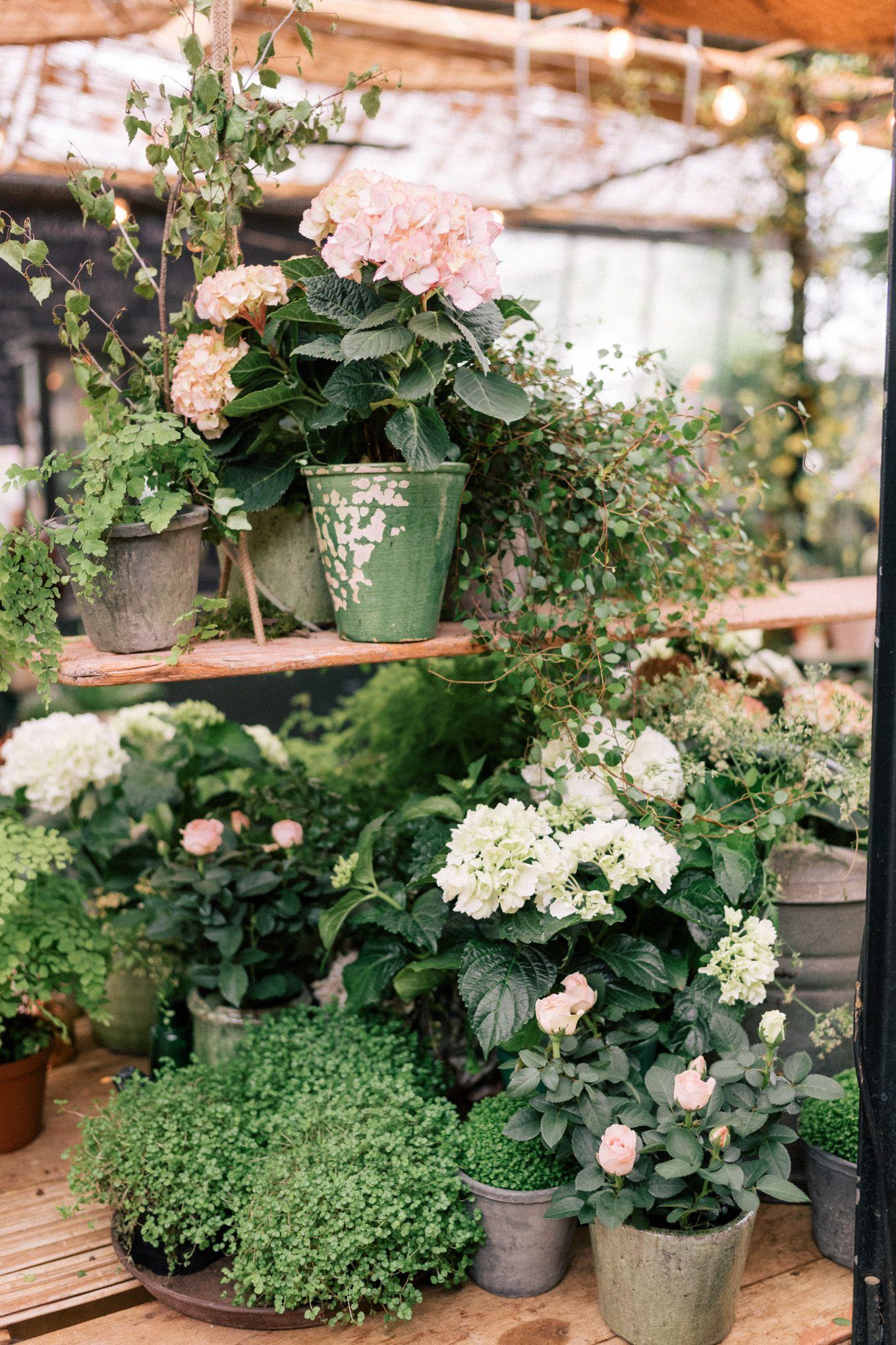 Petersham Nurseries London Flowers Gardens Inspiration