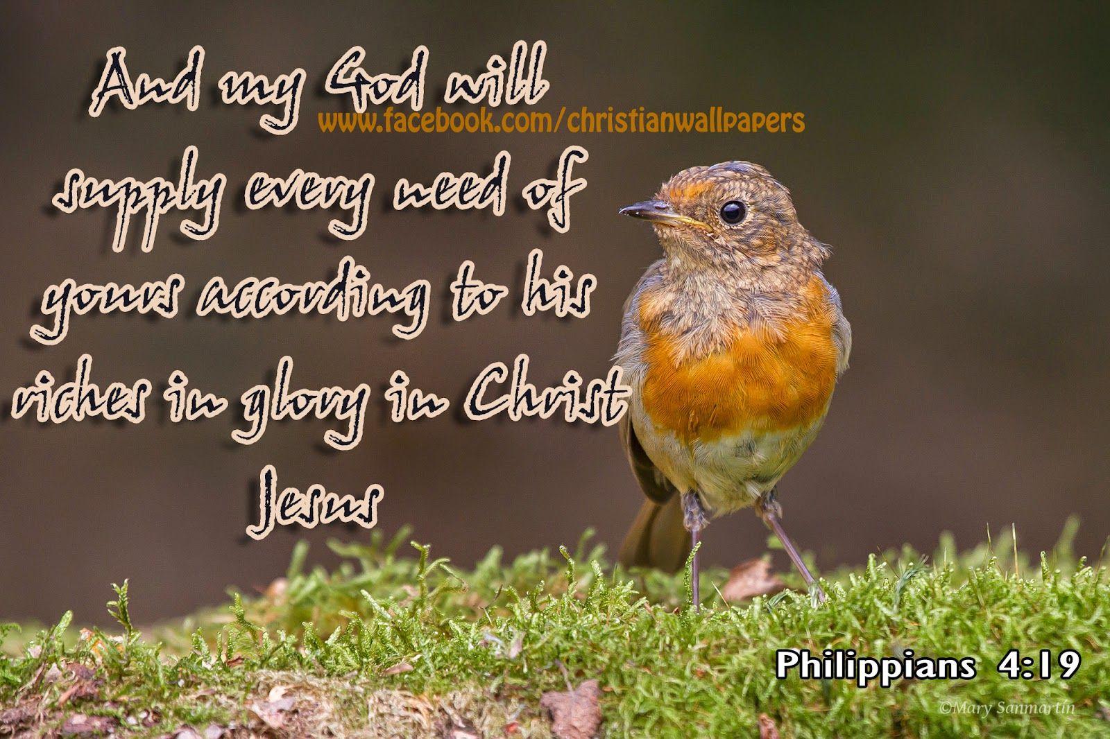 Download Hd Christmas Bible Verse Greetings Card Wallpapers Free