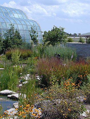 6f8df3d45d277204c0f404a05152c267 - St Louis Botanical Gardens Butterfly House