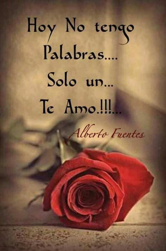 Solo Un Te Amo Frases Em Espanhol Frases
