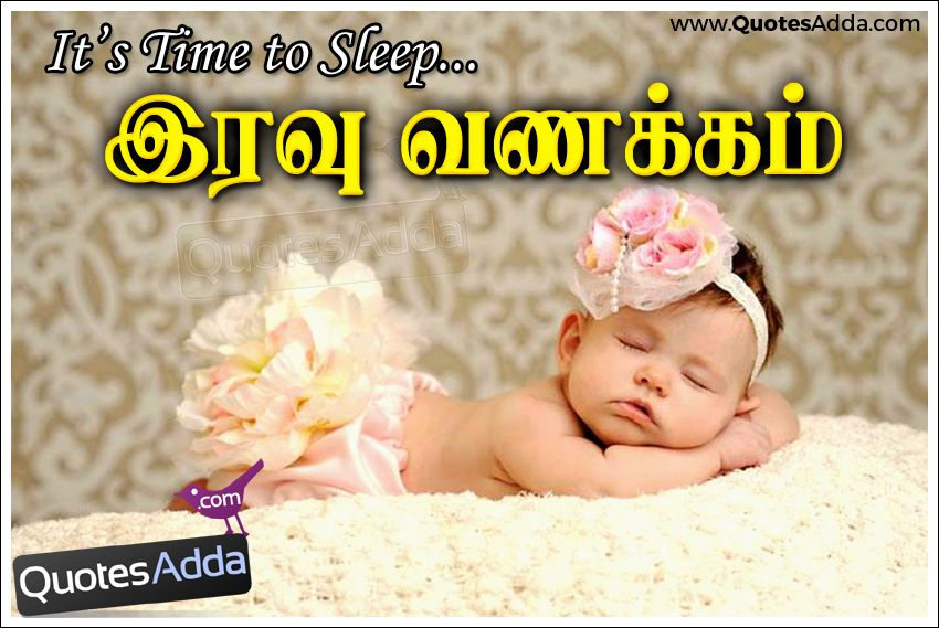 Quotes Adda Com Telugu Quotes Tamil Quotes Hindi Quotes English Tamil Cute Baby Sleeping Im Cute Baby Sleeping Funny Good Night Quotes Cool Baby Stuff